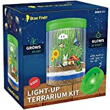 Light up Terrarium Kit for Kids with Colorful LED on Lid - Kids Birthday Educational Gifts for Boys & Girls Mini Garden in a Jar Great Science Kits - Gardening Gifts for Children - Kids Toys