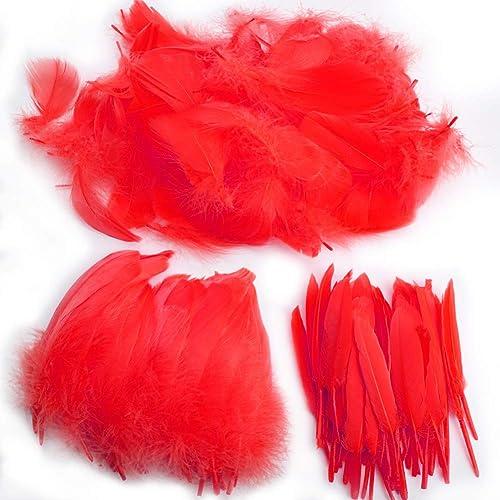 Plumes, 250 pcs Plume pour loisirs créatifs,colorées frappantes pour loisirs créatifs, loisirs créatifs, plumes natur...
