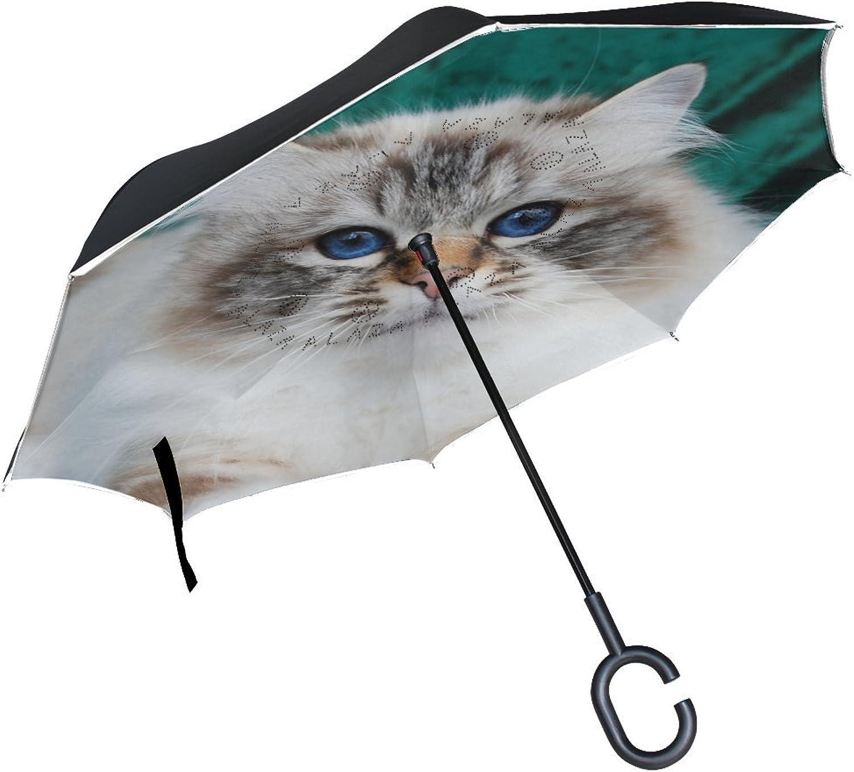 Animal Cat Birman blueeeeye Cute Pet Real Fluffy Animated Ingreened Umbrella Large Double Layer Outdoor Rain Sun Car Reversible Umbrella