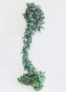 Floral Home Artificial Eucalyptus Garland - 8' Long- Sale