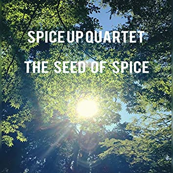 The Seed of Spice