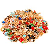 SANNIX 170Pcs Jewelry Making Charms Assorted Gold Plated Enamel Necklace Bracelet Charms P...