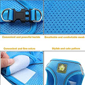 FEimaX Dog Harness and Leash Set, No-Pull Breathable Soft Mesh Puppy Vest Harness Reflective Adjustable Pet Harnesses for Small Medium Dogs and Cats - Outdoor Easy Control for Walking