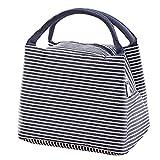 LQZ Fashion Stripe Picnic School Office Insulated Tote Lunch Bag for Women Men