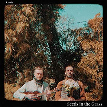 Seeds in the Grass
