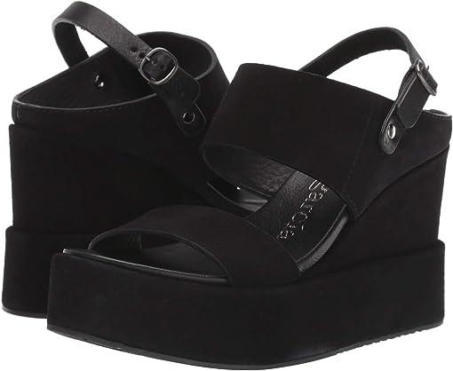 Black Castoro