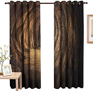 AndyTours Pattern Curtains Cave,Ancient Geologic Formation in Digital Painting Style Subterranean Tunnel with a Gate,Pale Brown,Living Room and Bedroom Multicolor Printed Curtain Sets 54
