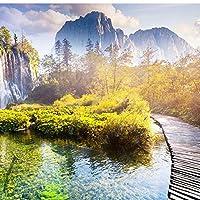 xueshao壁画中国風滝自然風景写真壁紙リビングルーム書斎寝室居心地の良い装飾