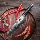 SHAN ZU Damastmesser Kochmesser 67 Schichten Damaststahl Küchenmesser mit G10 Griff 20cm - PRO Series - 6