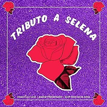 Tributo a Selena (Como la Flor / Amor Prohibido / Bidi Bidi Bom Bom)