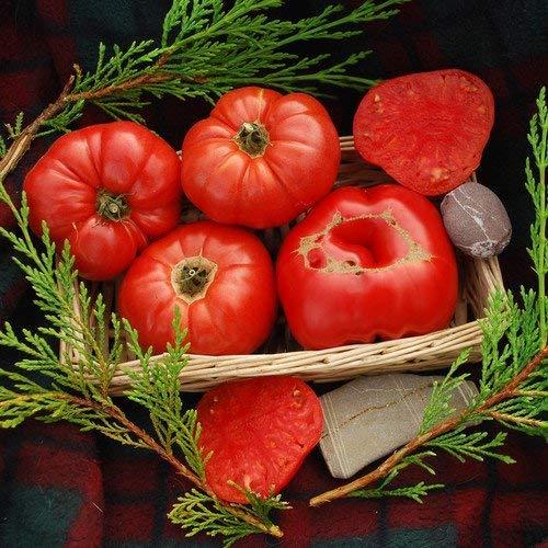 RETS Seeds: - Henderson Winsall Seeds