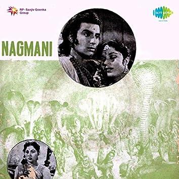 """Pinjre Ke Panchhi (From """"Nagmani"""") - Single"""