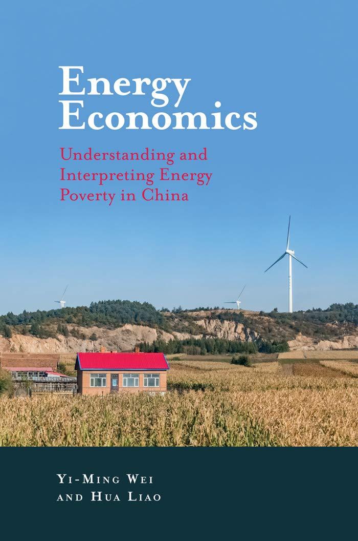 Energy Economics: Understanding and Interpreting Energy Poverty in China