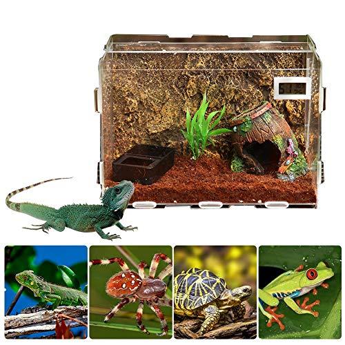 boastvi Reptilien Eidechse Terrarium Glas, Acryl Glas Spinne Terrarium, 30 x 20 x 20 cm Reptilienbehälter, Zuchtbox Insekten, Terrarium Reptilien Glas Hous (Landschaft Nicht Einschließen)