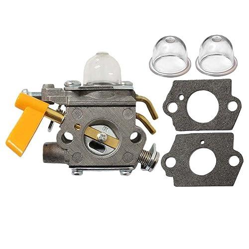 Ryobi Carburetor Kit: Amazon.com on