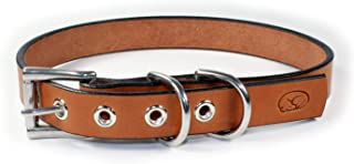 """sleepy pup Deluxe Bridle Leather Dog Collar - Made in Virginia (Large: 18""""-20"""", Light Brown)"""