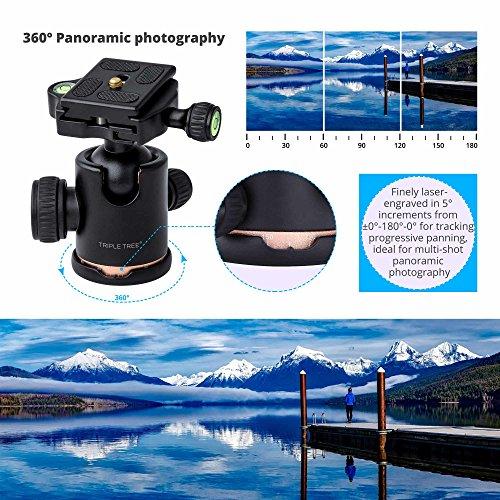 TRIPLE TREE tripod Ball Head,360 Degrees Rotation for Canon Sony Nikon DSLR Cameras, Tripod and Monopod, Maximum Load 17.6 Lbs, Two 1/4