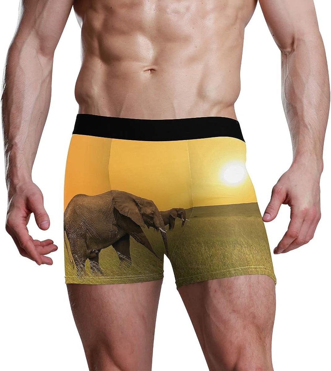 Mens Underwear Briefs African Animal Elephants in Savanah at Sunset Breathable Long Boxer Briefs Underwear Boys