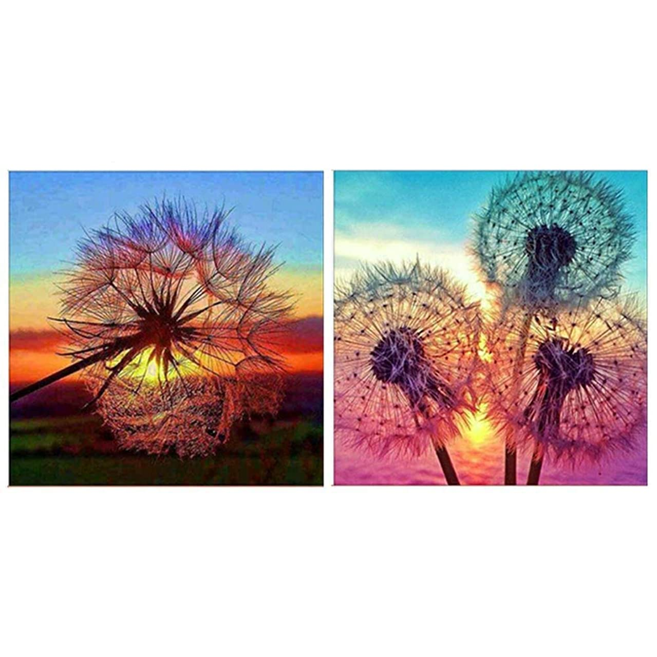 2 Pack 5D DIY Dandelion Diamond Painting Kits Wall Stickers Crystal Full Drill Diamond Painting Kit Embroidery Paintings, 12