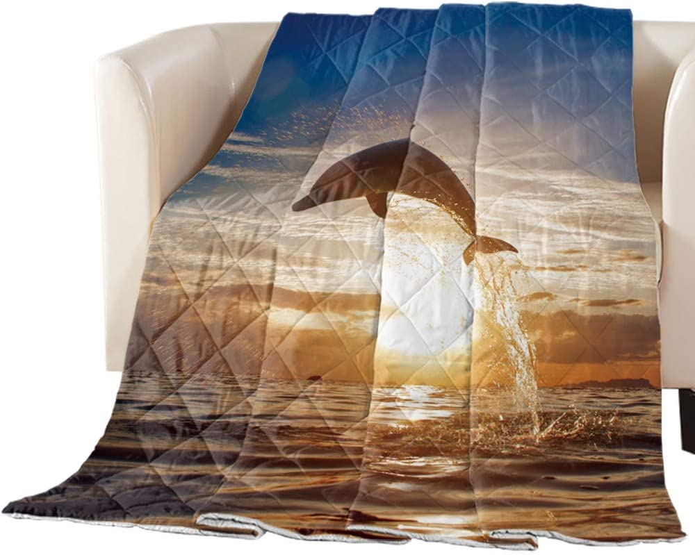 CyCoShower Comforter SoftCozy Bedding Special sale item Cover Seasons for All lowest price Dol