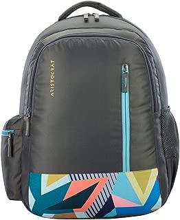ARISTOCRAT Zest 2 Backpack Grey