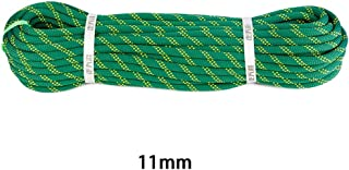 GLJJQMY Climbing Rope Electrostatic Rope Nylon Rope Aerial Work Rope Diameter 11mm3 Color Optional Ropes (Color : C, Size : 11mm 30m)