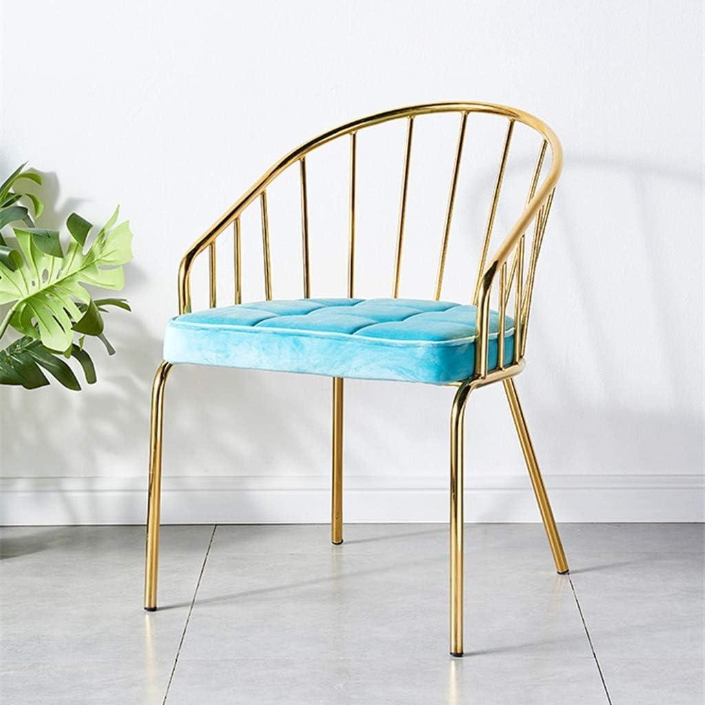 LF Chaise de Salle, Chaise de Bureau Simple, créative Dossier, Chaise Loisirs, Maison Adulte Chaise de Salle Simple (Color : Green) Blue