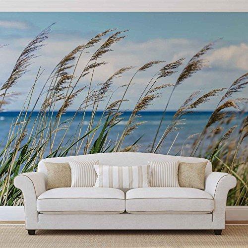 Strand See Sand Natur - Forwall - Fototapete - Tapete - Fotomural - Mural Wandbild - (1976WM) - XXXL - 416cm x 254cm - VLIES (EasyInstall) - 4 Pieces