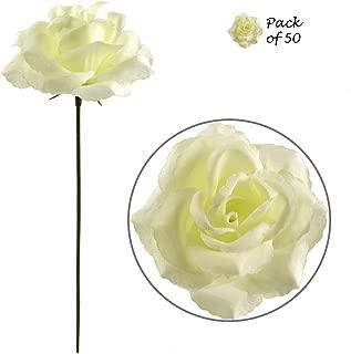 Best white stem flowers Reviews