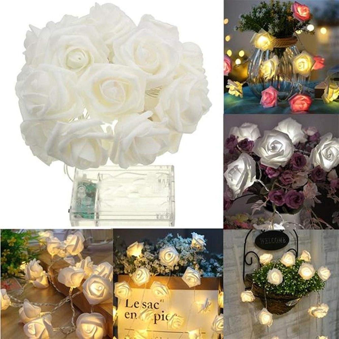 デイジー電子に負けるZUIANSHANG 1Mバッテリ駆動9LEDsウォームホワイト屋内ベッドルームの装飾ウェディングローズ花の妖精の文字列ライト ストリングスライト