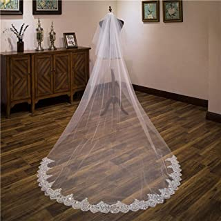 Wedding Veil,Cathedral Embroidery Romantic Lace Sequins Shiny Wedding Accessories,Soft Tulle 2 Tier with Comb