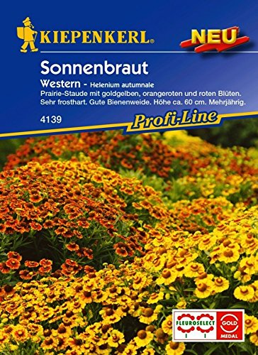 Kiepenkerl Sonnenbraut 'Western'   gelb, orange und rot   mehrjährig   1 Packung Samen