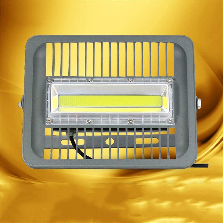 HUI LIGHT Sicher Strahler Mit,Wasserdichte Outdoor Garten Landschaft Scheinwerfer Tunnel Engineering Projektionslicht für Die Gartenparty (Farbe   Warmes Licht, gre   50W)