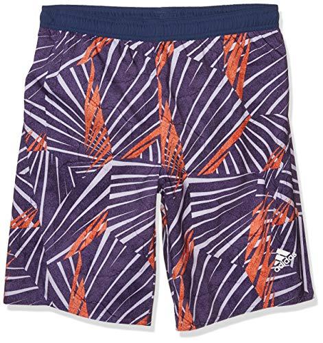 Opiniones de Pantalones cortos para Niño los 10 mejores. 3
