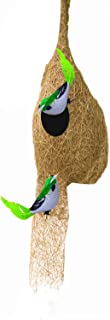 LIVEONCE Weaver Bird nest with Two Birds,Material Type -Coir,Color -Brown, Size (H 28 cm,Diameter 15 cm), Set of 1