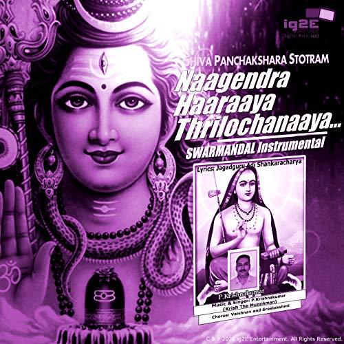 Naagendra Haaraaya Thrilochanaaya (Swarmandal Instrumental)