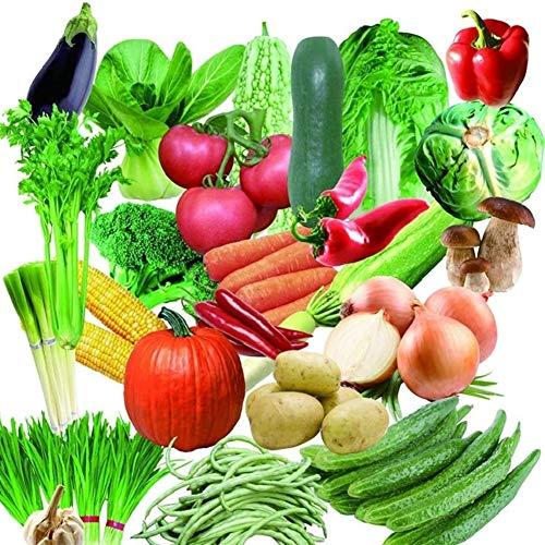 Pack Vegetable Seeds Garden Vegetable Seeds Mixed Organic Vegetable Seeds Bonsai Nutritious Garden...
