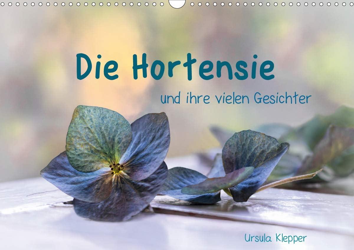 Die Hortensie und ihre vielen Wandkalender Shipping included A 2021 Gesichter DIN Clearance SALE! Limited time!