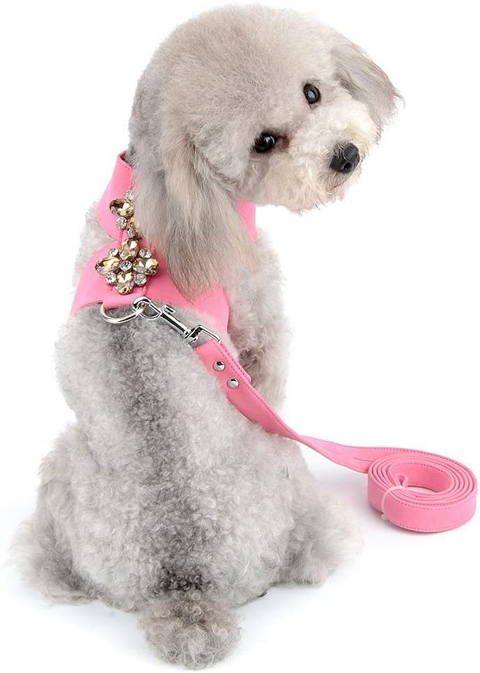 SELMAI Dog Vest Harness and latest Leash Puppy Pet Small Doggie Max 75% OFF for Set