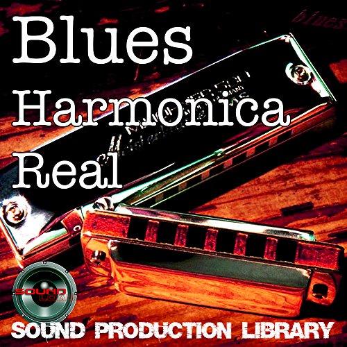 Blues Mundharmonika Echt–Groß, Sehr nützlich Original Wave/NKI Schlaufen Bibliothek auf DVD oder für Download