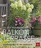 Das BLV Handbuch Balkon & Terrasse: Gestaltungsideen für alle Jahreszeiten
