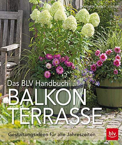 Das BLV Handbuch Balkon Terrasse:...