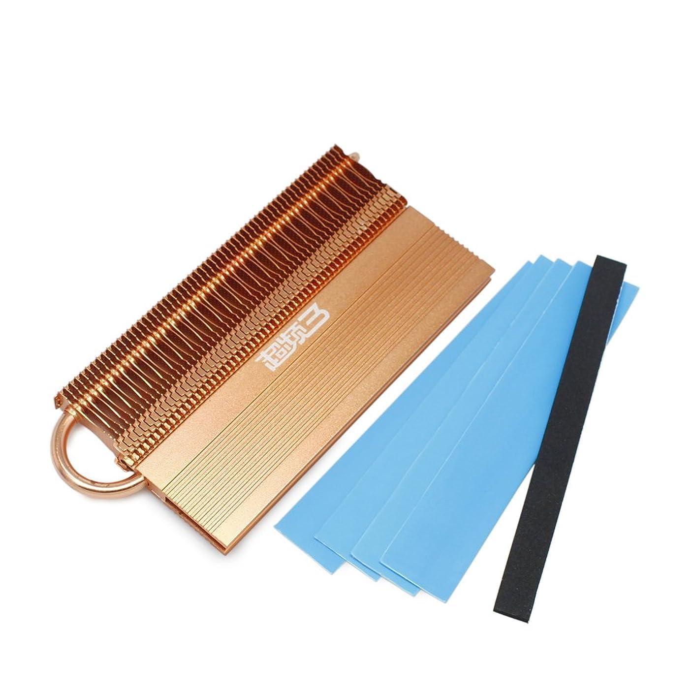 Aluminium w/ Copper Heat pipe Heatsink Heat Spreader For DDR RAM Memory Cooling