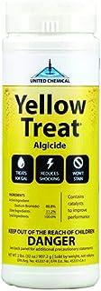Eeveelution Yellow