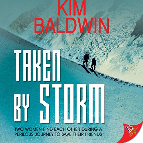 Taken By Storm audiobook cover art