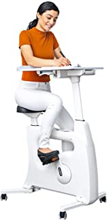 FLEXISPOT Adjustable Exercise Bike Desk Standing Desk Cycle for Home Office - Deskcise Pro
