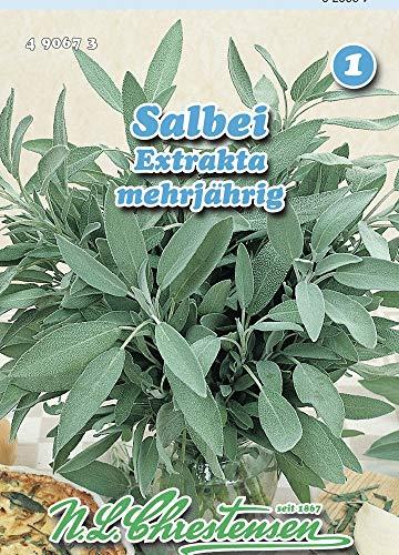 N.L. Chrestensen 490673 Salbei Extrakta (Salbeisamen)