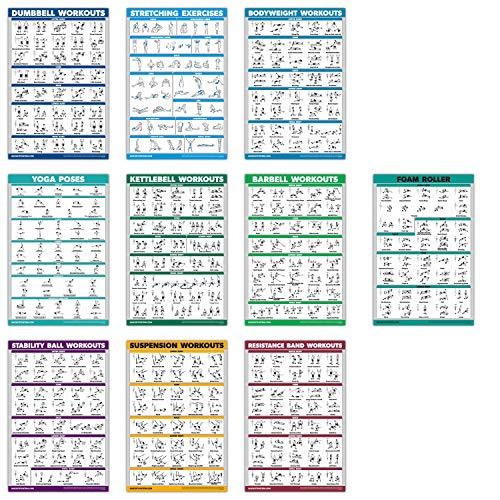 "QuickFit Übungsposter-Set – Schaumstoff-Roller, Hantel, Suspension, Kettlebell, Widerstandsbänder, Stretching, Körpergewicht, Langhantel, Yoga-Posen, Übungsball, 10 Stück, laminiert, 18\"" x 27\"""