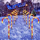 TrueCraftware Candy Cane Pathway Markers - 22-Inch Indoor & Outdoor Christmas Lights - Decorations for Walkway, Driveway, Garden, Lawn - Set of 10 Lighting Stakes with 6 Bulbs Each - 110 Volts Power