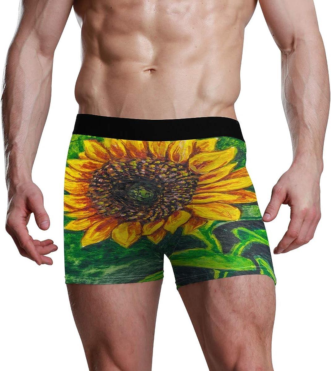 Mens Boxer Briefs Underwear Sunflower with Seeds On The Farm Trunks Underwear Short Leg Boys